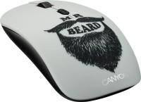 Мышь беспроводная USB CANYON CND-CMSW401BD